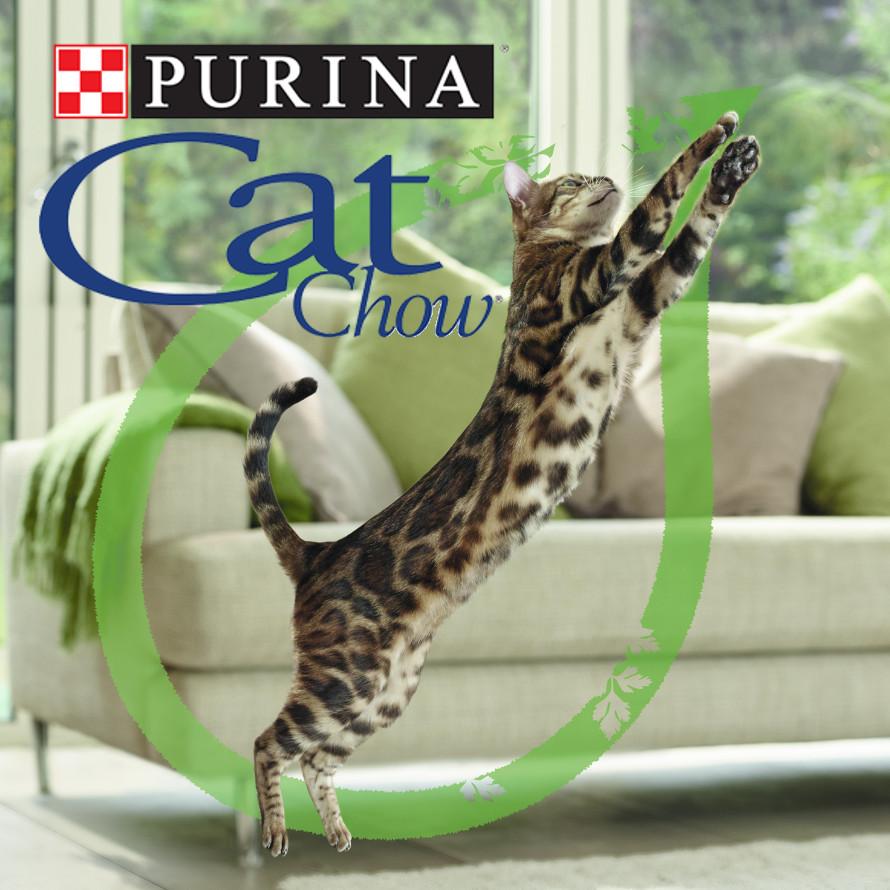 Purina® Cat Chow®, per gatti naturalmente straordinari!