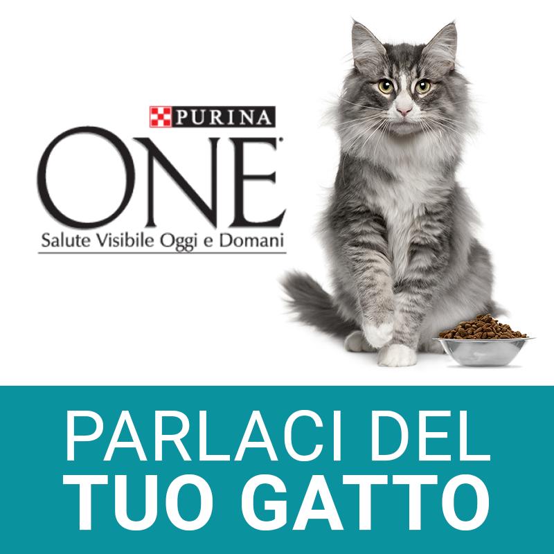 Parlaci del tuo gatto…