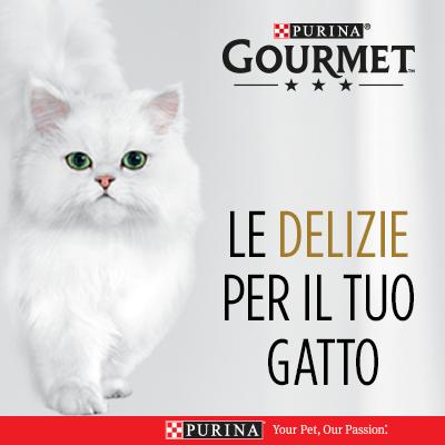 Le Delizie per il tuo gatto!