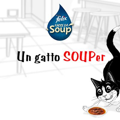 Un gatto SOUPer!