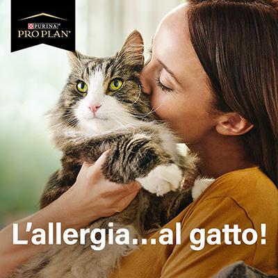 L'allergia…al gatto!