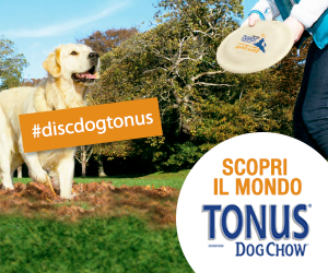 Disc Dog Tonus