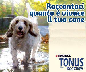 GRUPPO Tonus Dog Chow