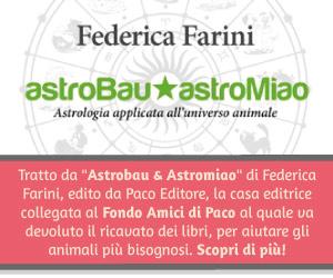 Federica Farini
