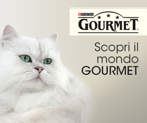 Purina Gourmet Gatto