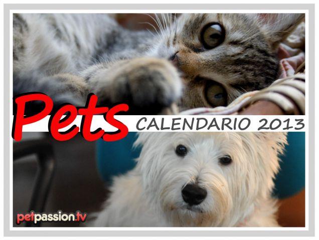 Copertina - Calendario Pets 2013 di PetPassion