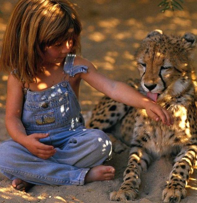 Tippi Degré gioca con un giovane ghepardo