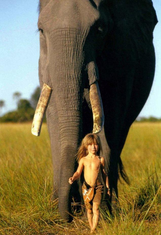 Tippi Degré passeggia con un elefante africano