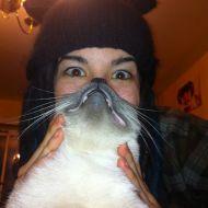 Cat Beard (esempio)
