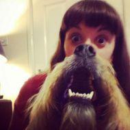 Dog Beard (esempio)