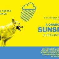 Una possibilità per Sunshine