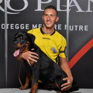 Cucciolo di Rottweiler