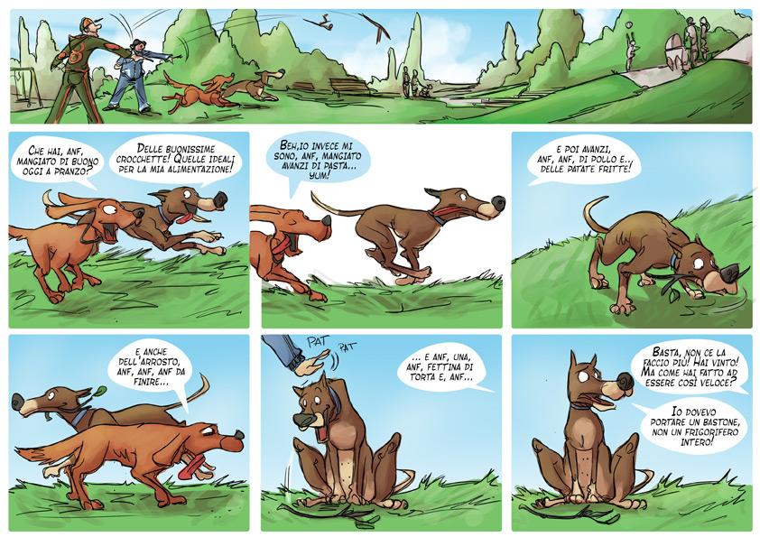 Estremamente Cibo da riporto | Video Divertenti Animali | Petpassion ZO28