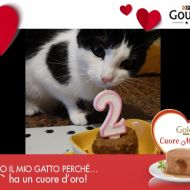 Buon Compleanno Trilly!
