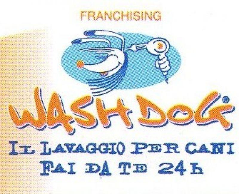 WashDog Pavia