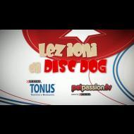 Lezioni disc dog- Around the world e Zig Zag