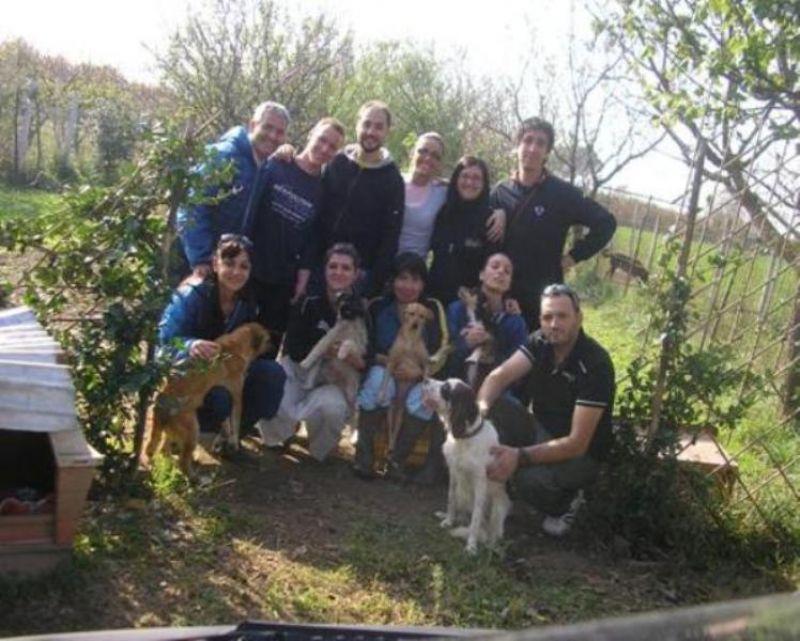 Associazione Animalista Maddalonese