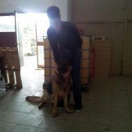 Leon & Io