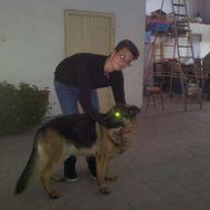 Leon :)