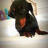 Il bagnetto mi rilassa;)