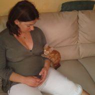 o e il gattino rosso