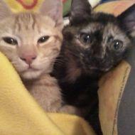 Lucilla e Oliver