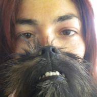 dog beard monster