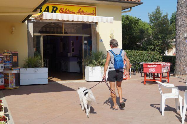 Lilly va a prendersi un gelato dopo il bagno petpassion - Bagno cane dopo antipulci ...