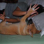 Argo appena sveglio