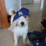 Kiki Rapper