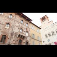 La cagnolina Bibì a Perugia