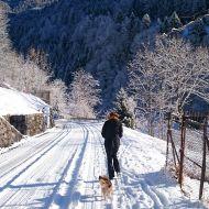 ultime nevicate (si spera) sulle Alpi