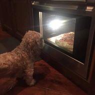 mamy e' pronta la pizza?