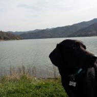 Lanny al lago