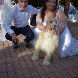 Milo al nostro matrimonio