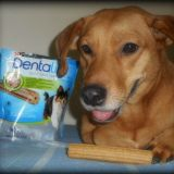 Teo e lo snack Purina Dentalife