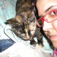 io e la mia gatta