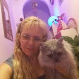 Foto scatto  cn il gatto