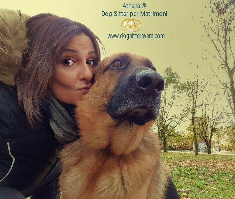 Athena® Dog Sitter per Matrimoni