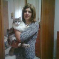 io e kitty  morbida somiglianza