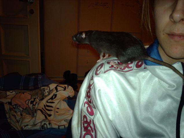 perla curiosa dalla mia spalla :-)