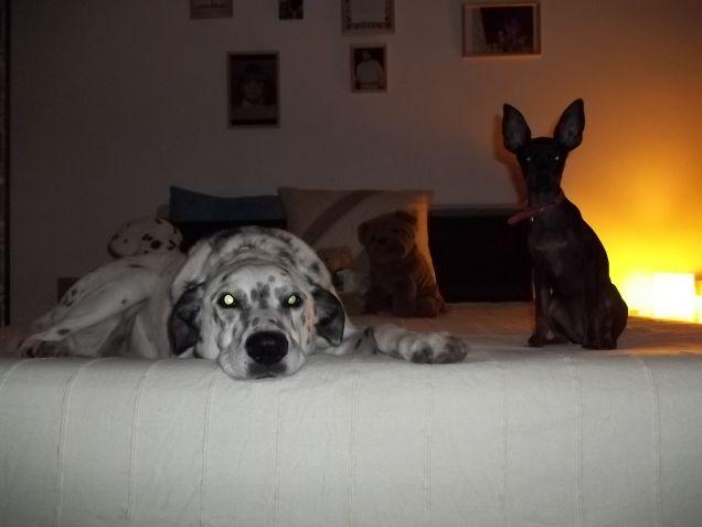 Tatanka & Liù